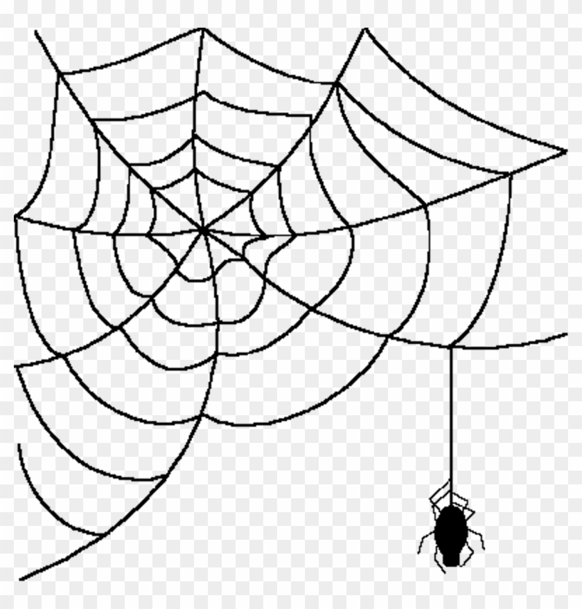 Cartoon Spider With Web , Png Download.