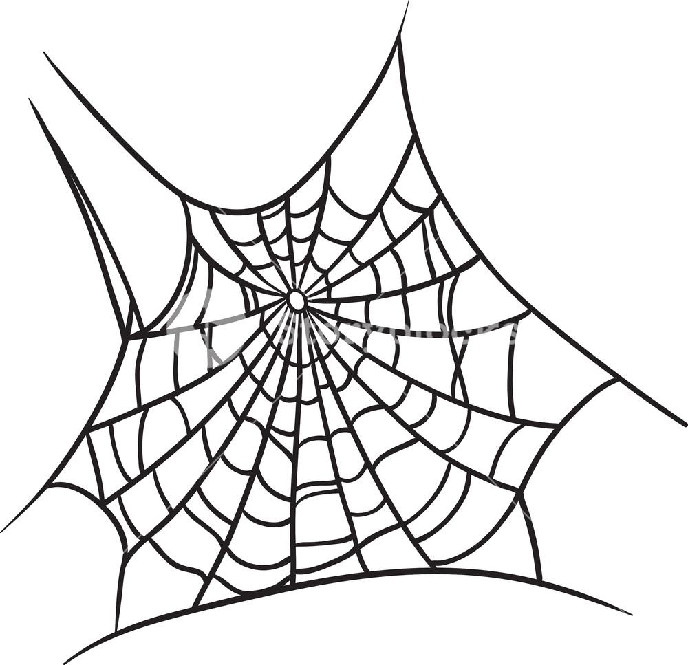 Vector Spiderweb Royalty.