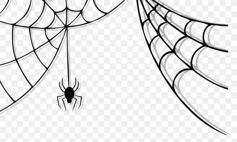 Spider Web Spider.