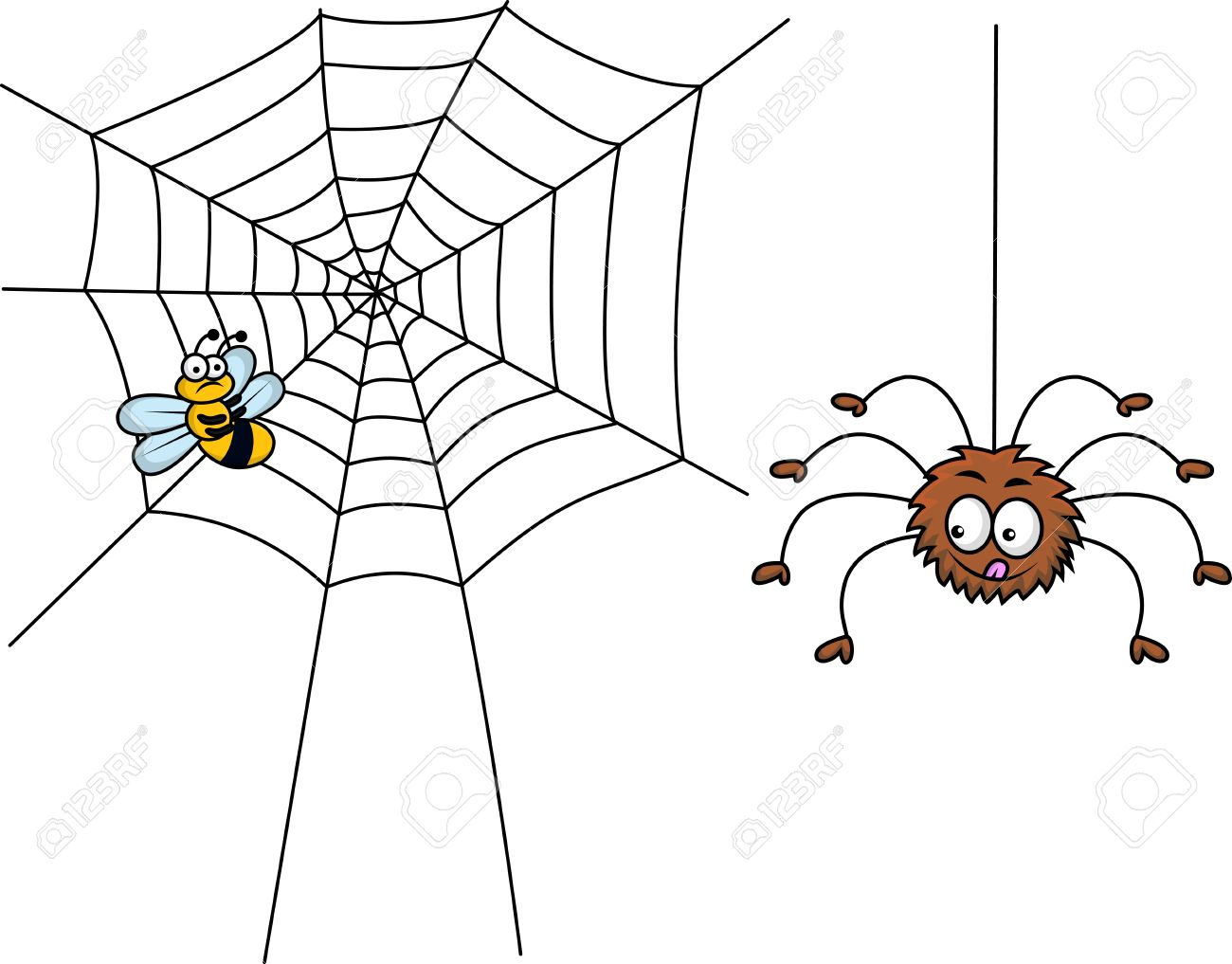 Spider And Prey Royalty Free Cliparts, Vectors, And Stock.