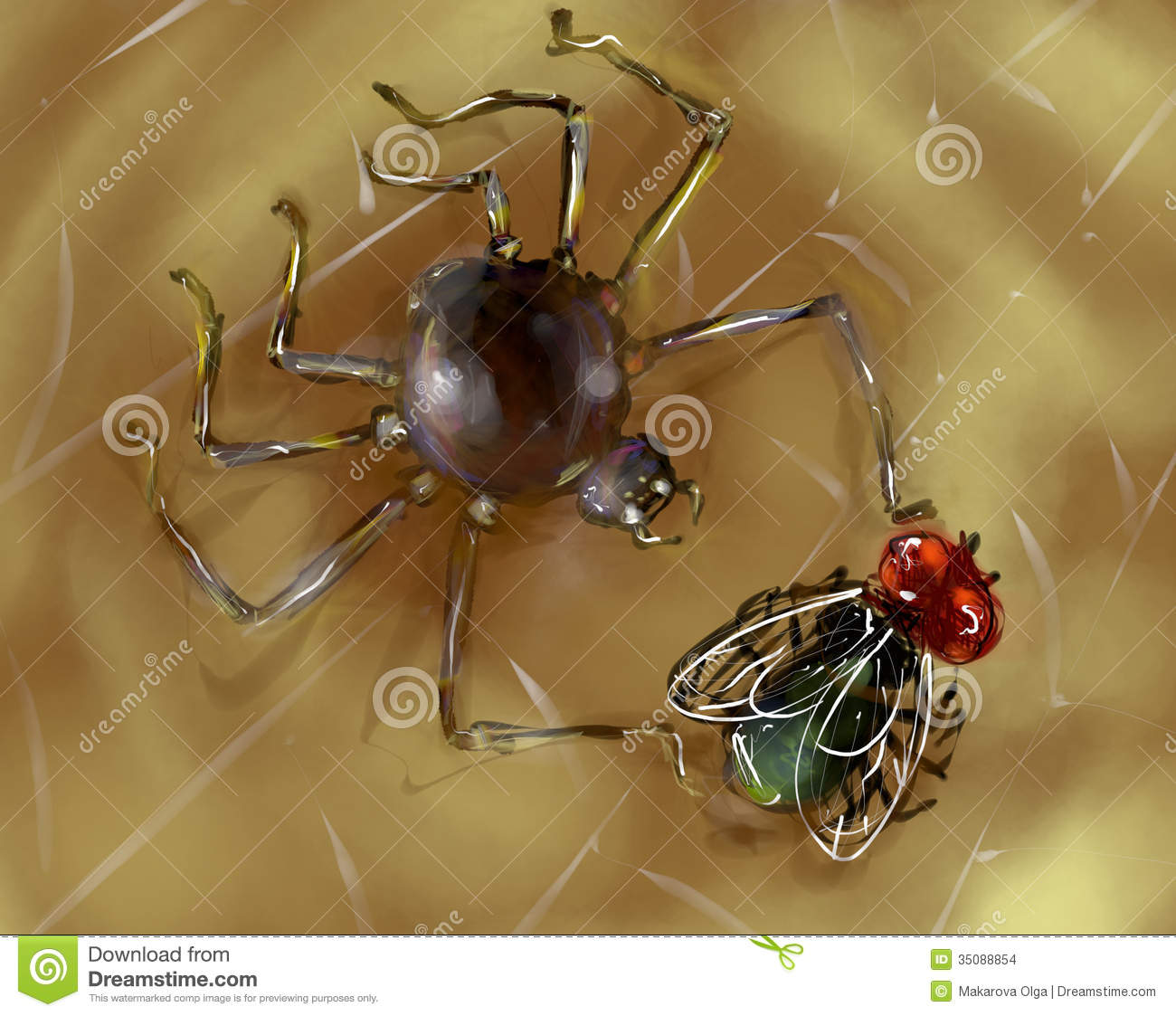 Spider With It's Prey Stock Images.