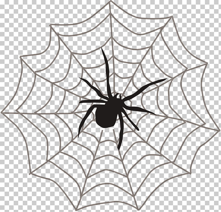 Spider web Itsy Bitsy Spider , Spider web spider PNG clipart.