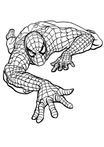 Spiderman spider man black and white clipart clipartfest.