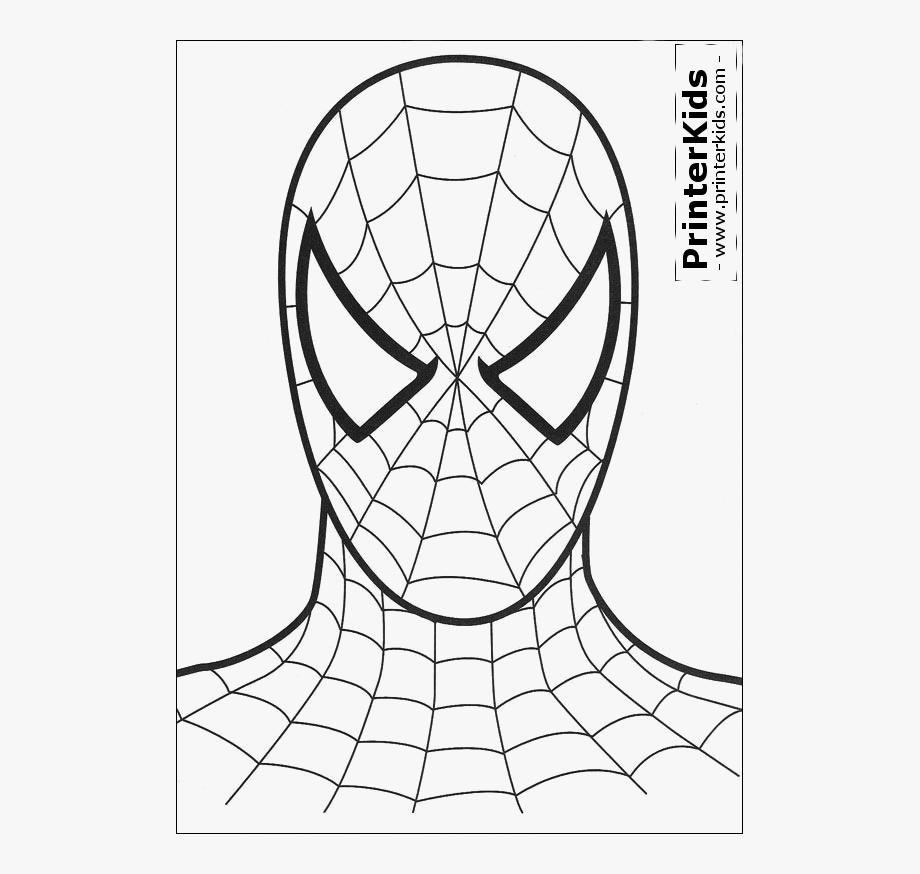 Amazing Spider.