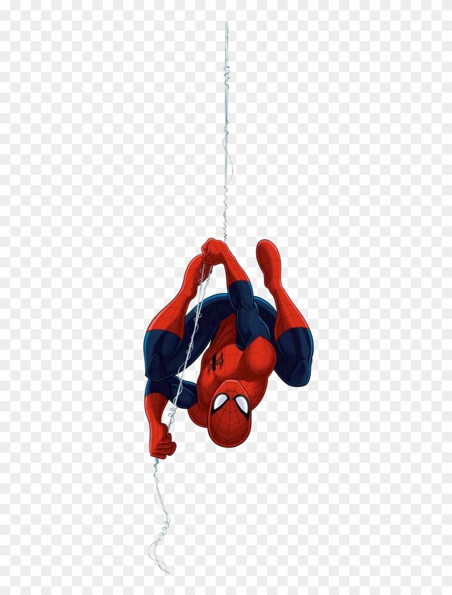 Spider Man Upside Down, Spider Man Hang.