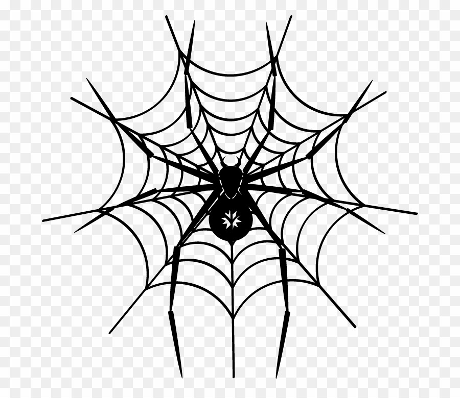 Spider Web PNG Spider.