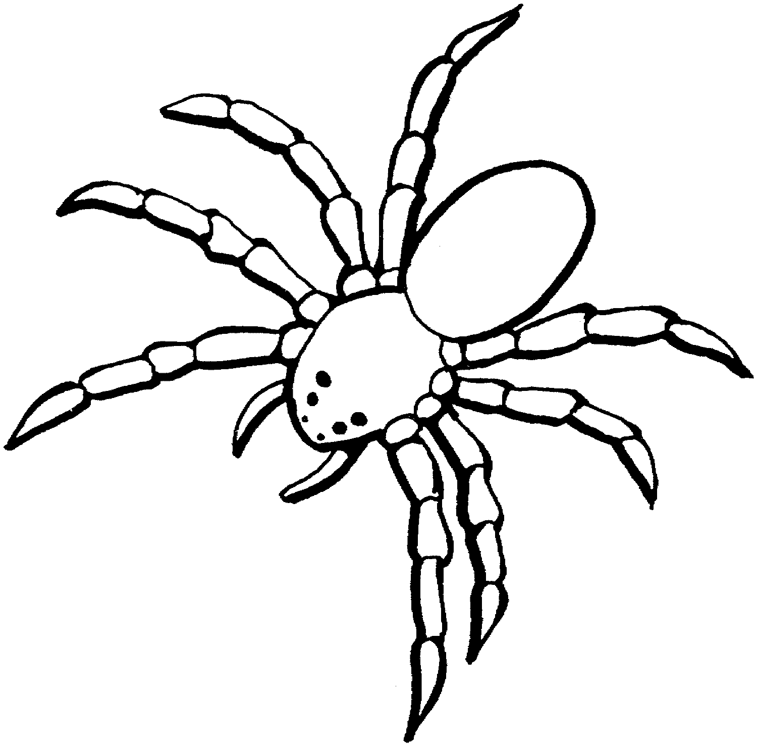 6865 Spider free clipart.