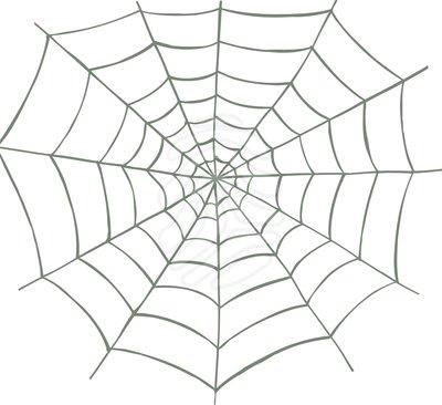 Spider web clip art clipartix.
