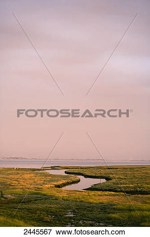Picture of Panoramic view of landscape, Spiekeroog, Lower Saxony.