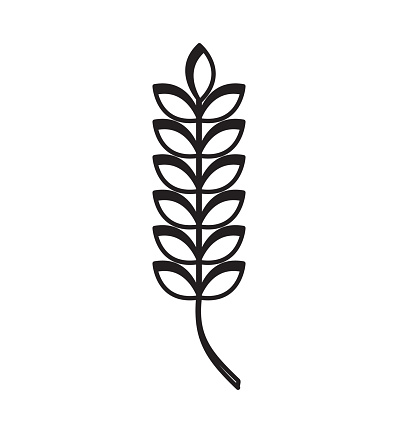 Wheat Spike Clip Art, Vector Images & Illustrations.