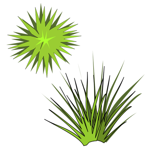 Vector illustration of green spiky plant with green sun above.