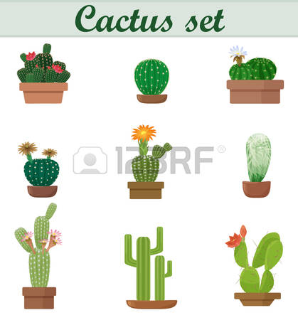 516 Spiky Flowers Stock Illustrations, Cliparts And Royalty Free.