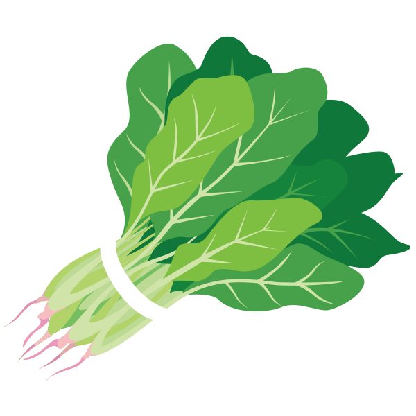 Spinach clipart clipartxtras png.