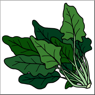 Clip Art: Spinach Color I abcteach.com.
