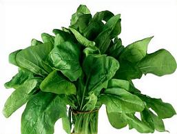 Free Spinach Plant Clipart.