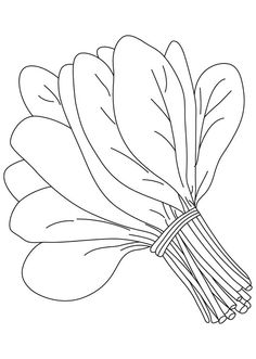 Spinach clipart black and white 3 » Clipart Station.