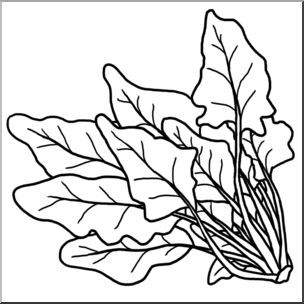 Clip art spinach png.