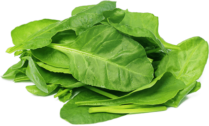 Spinach PNG Transparent Images.