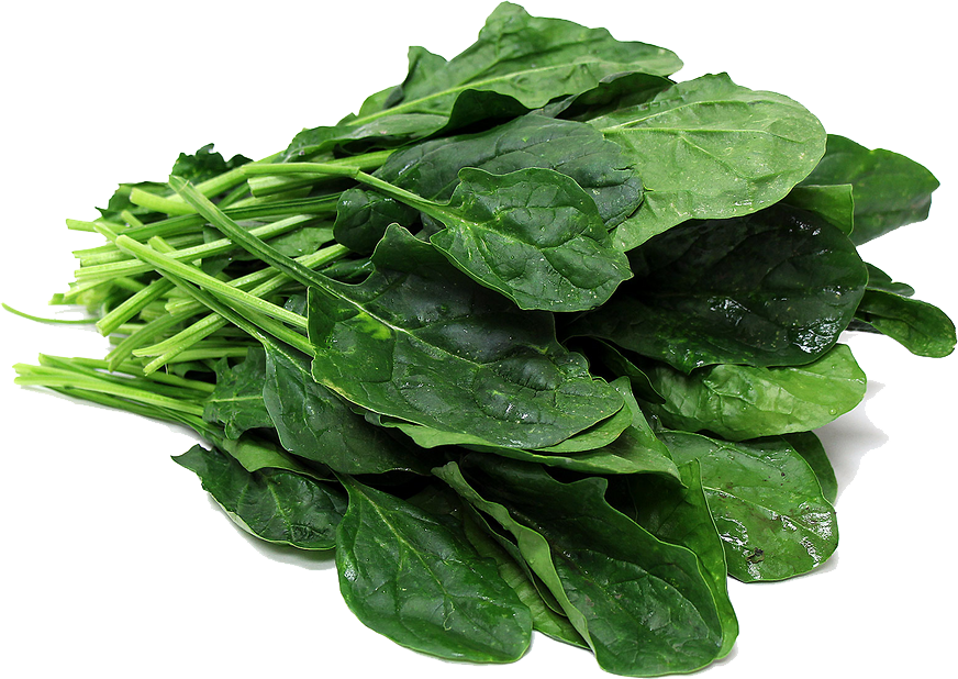 Download Spinach PNG File.