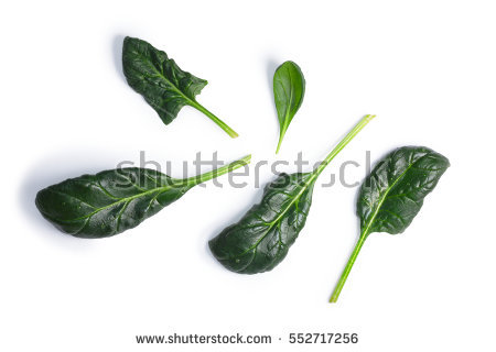 Spinach Leaves Stock Photos, Royalty.