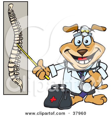 Spinal cord clipart.