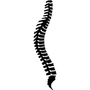 Spine Clipart.