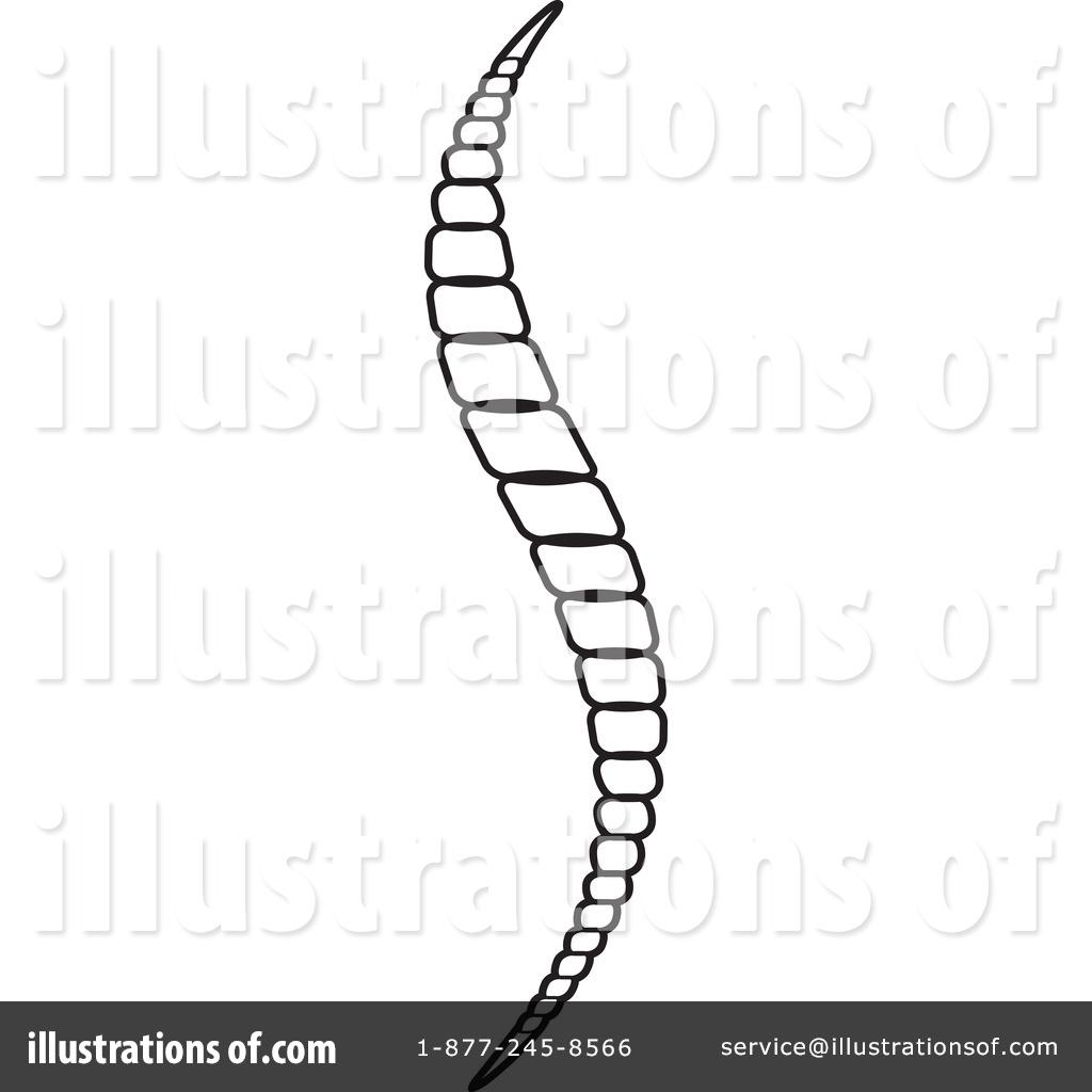 Spinal Clip Art.