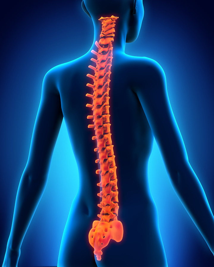 What Kinds of Accidents Have The Potential To Cause Spinal Cord.