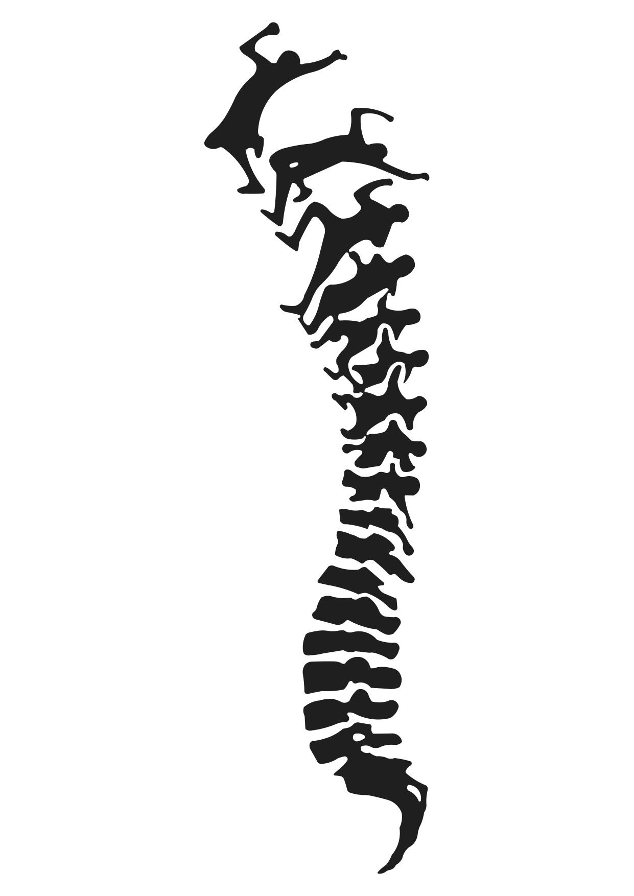 Clipart spine logo.