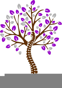 Free Spine Clipart.