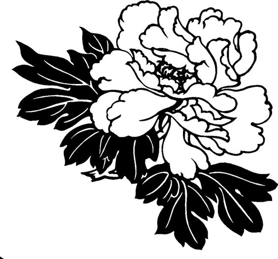 Hawaiian Flower Clipart Black and White.