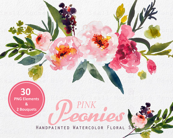 Digital Clipart Watercolor Flower Clipart peonies Clip art.
