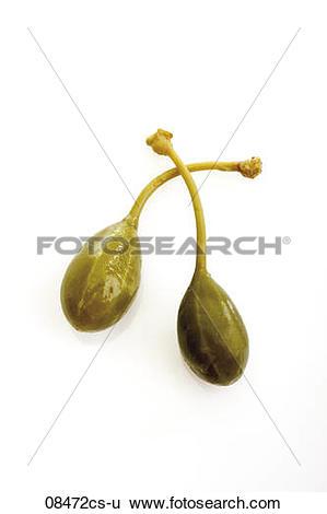 Stock Images of Caper fruit (Capparis spinosa) 08472cs.