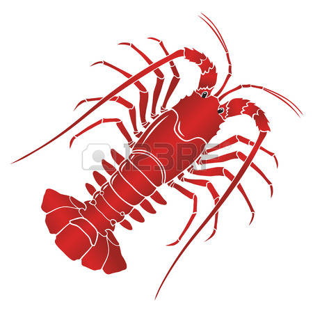 135 Spiny Lobsters Stock Vector Illustration And Royalty Free.