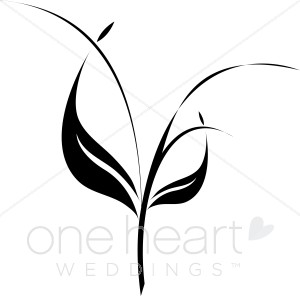 Stem and leaf clipart.
