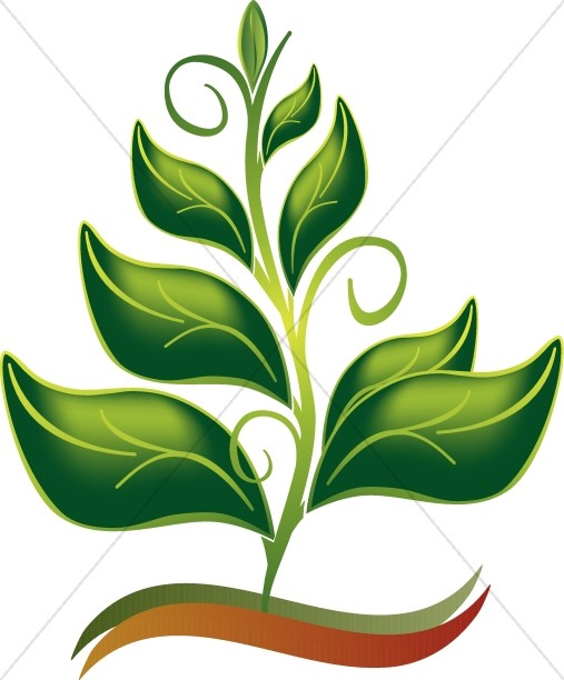 Growing In The Spirit Color Clipart.