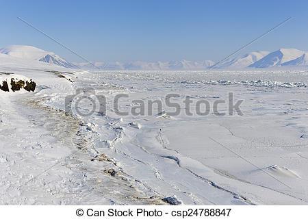 Stock Photo of View on with pack ice frozen Van Mijenfjorden.