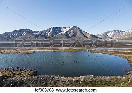Pictures of Europe, Norway, Spitsbergen, Svalbard, Longyearbyen.