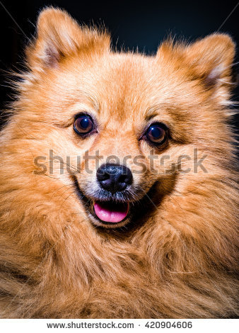 Velue Stock Photos, Royalty.