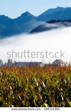 Fribourg Switzerland Stock Images, Royalty.