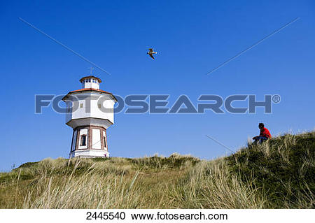 Stock Photography of Low angle view of person looking at bird.