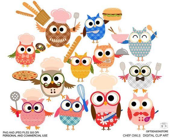 Chef owls Digital clip art for Personal and Commercial use.