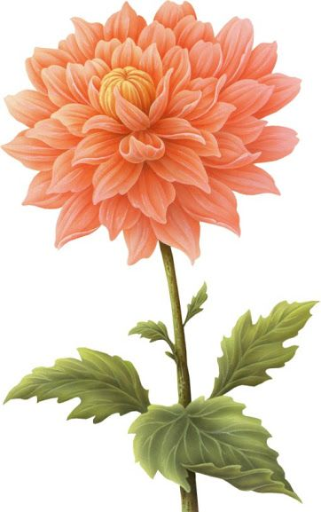 1000+ images about flower decoupage 2 on Pinterest.