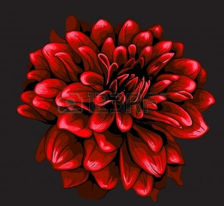 1000+ images about Красивые рисунки цветов on Pinterest.