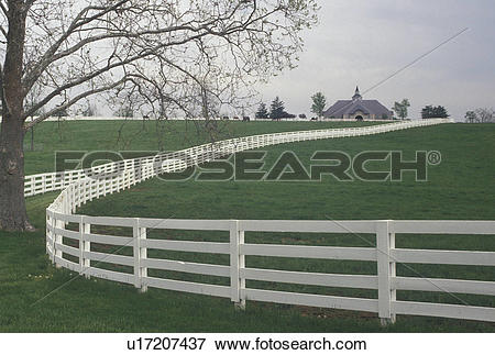 Picture of horse farm, Lexington, KY, Kentucky, White split rail.