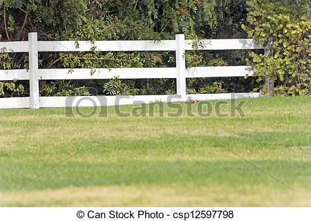 Stock Photographs of White wood split rail fence in the country.