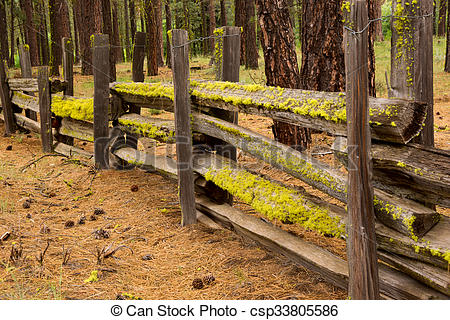 Pictures of Moss on a Split Rail Fence.