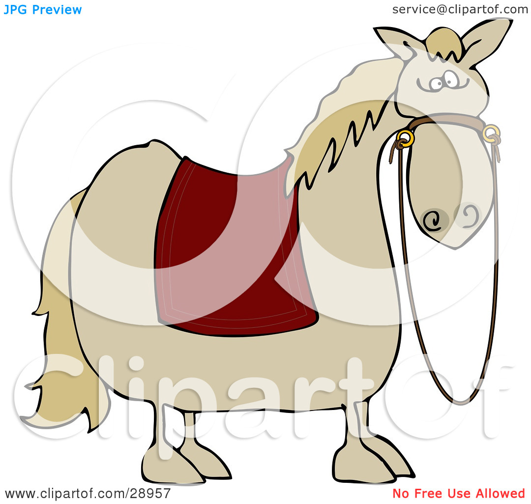 Horse Blanket Clipart.