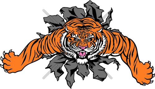 TigerBurst01NC2clr Clipart and Vectorart: Sports Mascots.