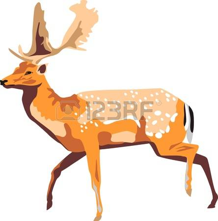 130 Spotted Deer Cliparts, Stock Vector And Royalty Free Spotted.